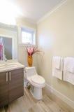 Salle de bains moderne de luxe d'intérieur de style Photo libre de droits