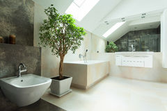 Salle de bains moderne de maison photographie stock libre de droits