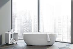 Salle de bains panoramique grise avec la baignoire illustration stock