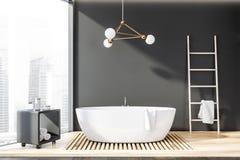 Salle de bains panoramique grise avec le baquet et l'échelle illustration de vecteur