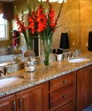Salle de bains principale classieuse Photographie stock