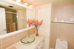 Salle de bains rose Photographie stock
