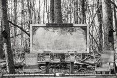 Salle de classe Clalkboard de région boisée Images stock