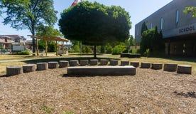 Salle de classe extérieure sur le tre d'étape de classe d'amphithéâtre de terrains d'école images stock