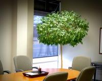 Salle de conférence avec l'arbre Photo stock