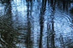 Salle de ` des réflexions déprimées de ` d'anneaux dans fin de soirée de lac Image libre de droits