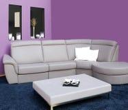 Salle de séjour avec des meubles Images stock