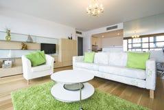 Salle de séjour construite neuve luxueuse dans un appartement terrasse Photos libres de droits