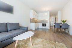 Salle de séjour et cuisine modernes Photographie stock