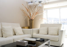 Salle de séjour moderne de luxe Image stock
