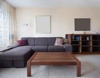 Salle de séjour occasionnelle Image stock