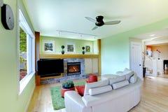 Salle de séjour verte avec la TV noire et le sofa beige. Photo stock