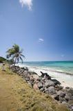 sallie de peachie du Nicaragua d'île de maïs de plage Images libres de droits