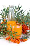Sallow thorn juice. Orange sallow thorn juice on white, healthy drink Royalty Free Stock Photos
