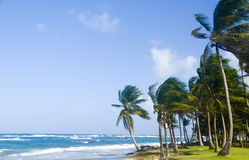 Sally Peaches Beach Big Corn Island Nicaragua Central America på arkivbild