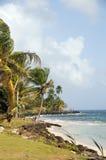 Sally Peaches beach Sally Peachie Big Corn Island Nicaragua. Caribbean Sea palm coconut trees Stock Photos
