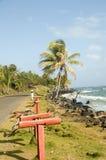 Sally Peaches beach Sally Peachie Big Corn Island Nicaragua. Caribbean Sea palm coconut trees on the main road Royalty Free Stock Photo