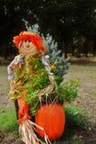 Sally Scarecrow Fotografía de archivo