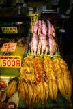 Salmões do Hokkaido Foto de Stock