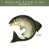 Salmões Marine Food Fish Fotos de Stock Royalty Free
