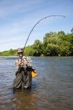 Salmões travados do pescador trações alegres Foto de Stock