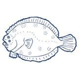 salmón curado retro del dibujo lineal de la historieta Foto de archivo libre de regalías