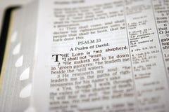 Salmo 23 Immagini Stock Libere da Diritti