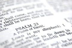 Salmo 23 Imagen de archivo libre de regalías