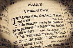Salmo 23 - El señor Is My Shepherd Imagen de archivo libre de regalías