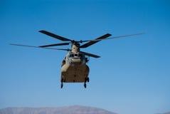 Salmão real CH-47 Fotos de Stock Royalty Free
