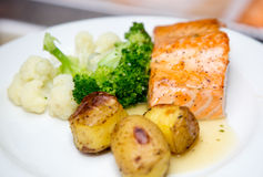 Salmon блюдо стоковые изображения rf