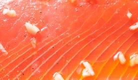 Salmon выкружка Стоковая Фотография