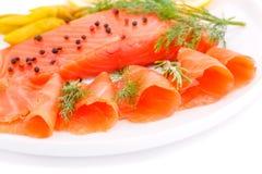 Salmon выкружка Стоковая Фотография RF