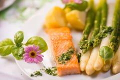 Salmon выкружка Стоковое Фото