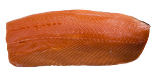 Salmon выкружка Стоковые Фото