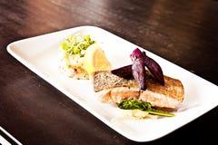 Salmon еда выкружки Стоковые Фото