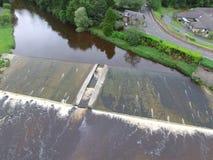 Salmon лестница Стоковая Фотография RF