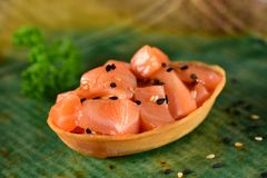 Salmon изолированное канапе стоковое фото