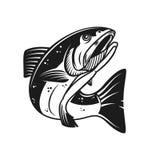 Salmon иллюстрация рыб изолированная на белой предпосылке Конструируйте элемент для логотипа, ярлыка, эмблемы, знака Стоковая Фотография