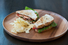 Salmon крупный план сандвича Стоковая Фотография RF