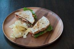 Salmon крупный план сандвича Стоковые Фотографии RF