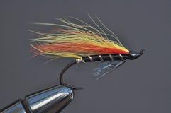 Salmon муха рыбной ловли Стоковые Фото