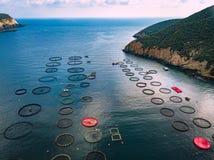 Salmon рыбоводческое хозяйство с плавая клетками вид с воздуха стоковое фото