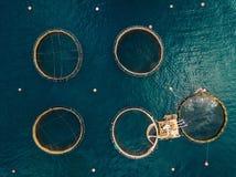 Salmon рыбоводческое хозяйство с плавая клетками вид с воздуха Стоковые Фото