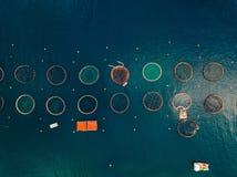 Salmon рыбоводческое хозяйство с плавая клетками вид с воздуха Стоковая Фотография RF