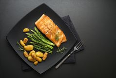 Salmon рыбы Стоковая Фотография RF