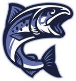 Salmon рыбы бесплатная иллюстрация