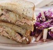 Salmon сандвич и красная капуста Стоковое фото RF