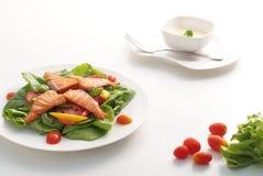 Salmon салат 1 Стоковая Фотография RF