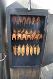 salmon стейк коптильни Стоковые Изображения
